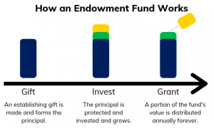 How an Endowment Fund Works